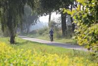 Radfahren in der Warendorfer Parklandschaft
