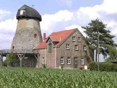 """Der """"Milter Mühlenmarkt"""": rund um die Milter Mühle"""