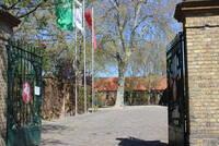 NRW-Landgestüt lädt zum Tag des offenen Gestüts