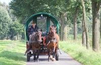 Im Programm: Eine Planwagenfahrt ins Grüne