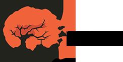 Chodo - Agentur für Webdesign und Marketing